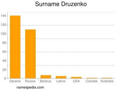 Surname Druzenko