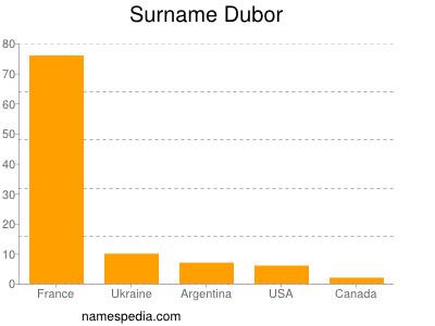Surname Dubor