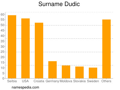 Surname Dudic