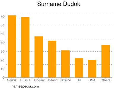 Surname Dudok