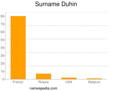 Surname Duhin