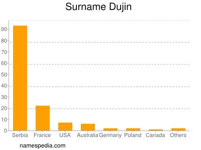 Surname Dujin