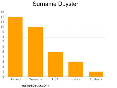 Surname Duyster