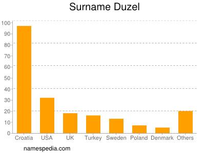 Surname Duzel