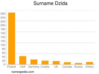 Surname Dzida