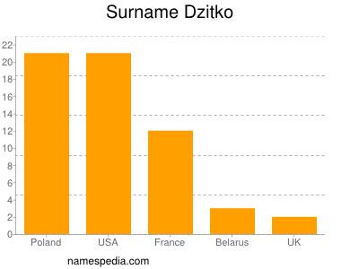 Surname Dzitko