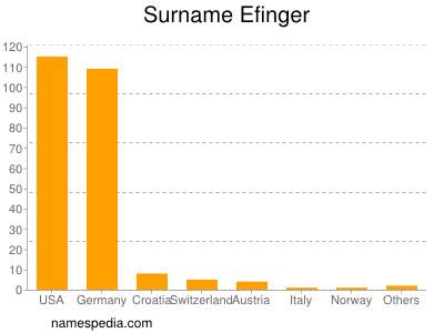 Surname Efinger