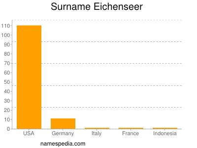 Surname Eichenseer