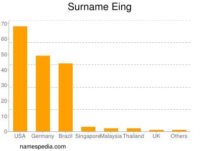 Surname Eing
