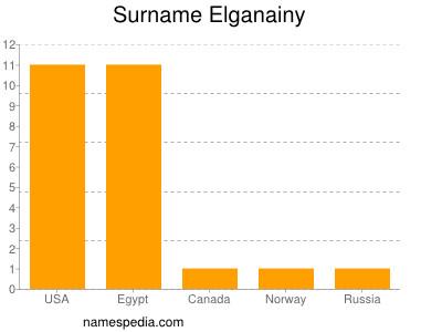 Surname Elganainy