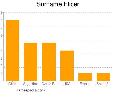 Surname Elicer
