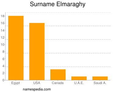 Surname Elmaraghy