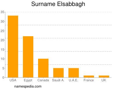 Surname Elsabbagh