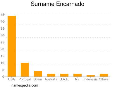 Familiennamen Encarnado