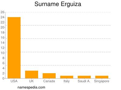 Surname Erguiza