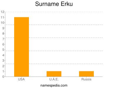 Surname Erku