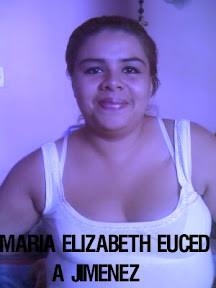 Euceda_3