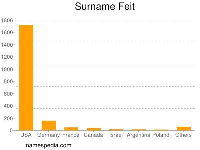 Surname Feit