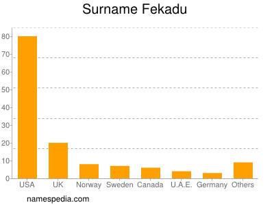 Surname Fekadu