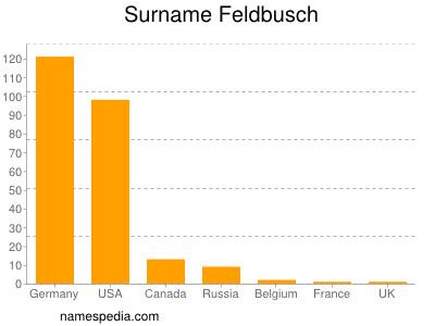 Surname Feldbusch