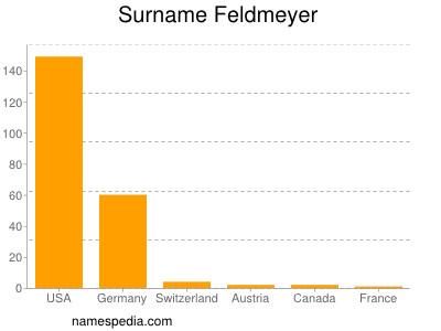 Surname Feldmeyer