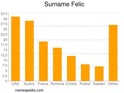 Surname Felic