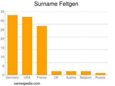 Surname Feltgen