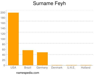 Surname Feyh