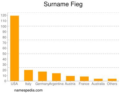 Surname Fieg
