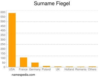 Surname Fiegel