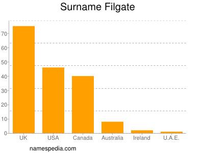 Surname Filgate