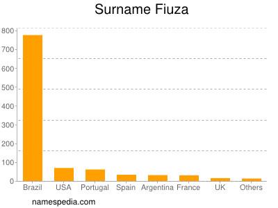 Surname Fiuza