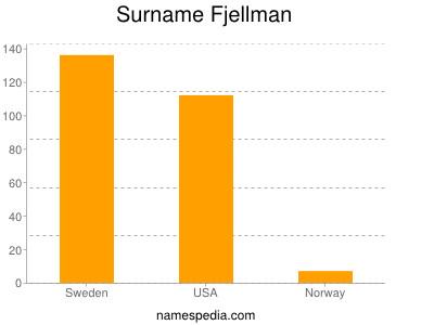 Surname Fjellman