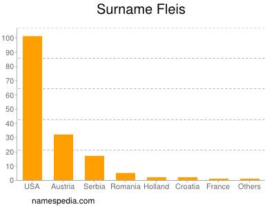 Surname Fleis