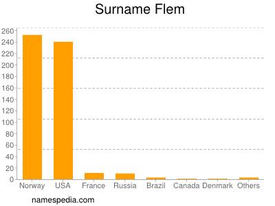Surname Flem