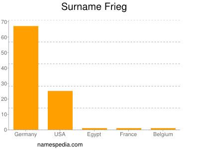 Surname Frieg