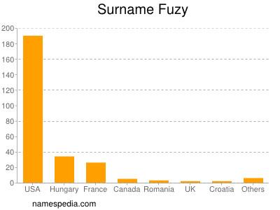 Surname Fuzy