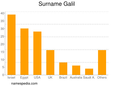 Surname Galil