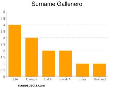 Surname Gallenero