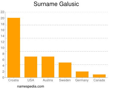 Surname Galusic