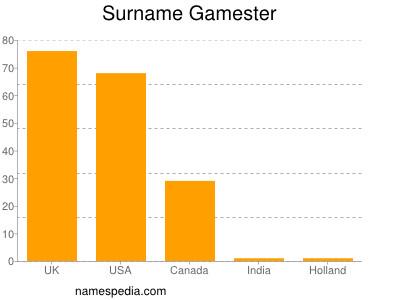 Surname Gamester