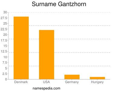 Surname Gantzhorn