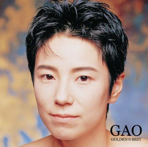 Gao_9