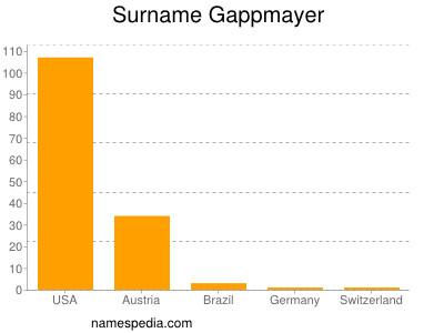 Surname Gappmayer