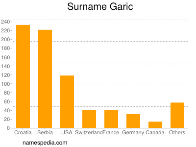 Surname Garic