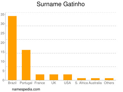 Surname Gatinho