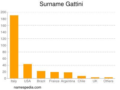 Surname Gattini