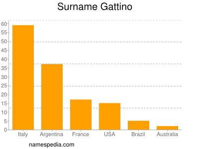 Surname Gattino