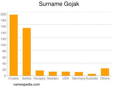 Surname Gojak