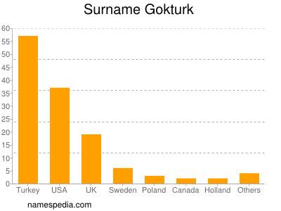 Surname Gokturk